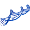 Erbanlagen/DNA