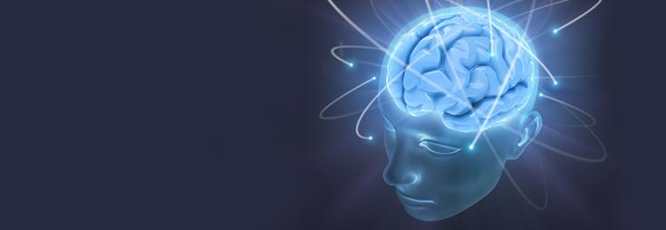 Gehirngesundheit, Nerven und Gedächtnis
